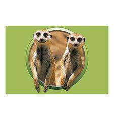 Smiling Meerkats Postcards (Package of 8)
