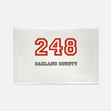 248 Rectangle Magnet
