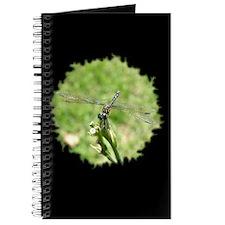Balance Black Journal
