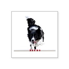 "Border Collie jump Square Sticker 3"" x 3"""