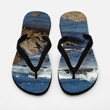 California Ocean 02 Flip Flops