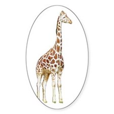 giraffe2 Oval Decal
