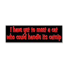 Cats and Catnip Car Magnet 10 x 3