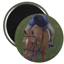 Young Rider and Pony Magnet