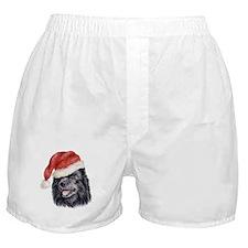 Christmas Swedish Lapphund Boxer Shorts