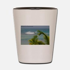 palm surf Shot Glass