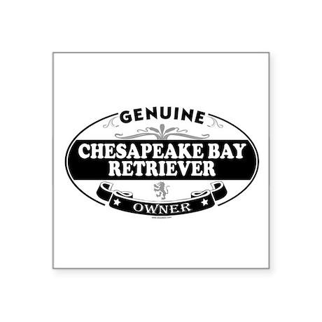 CHESAPEAKE BAY RETRIEVER Oval Sticker
