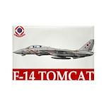F-14 Tomcat VF-102 DIAMONDBAC Rectangle Magnet (10