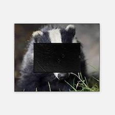 Badger Picture Frame