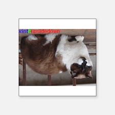 Cat (print-it-upside-down) Sticker