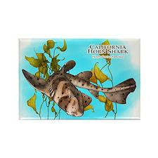 California Horn Shark Rectangle Magnet