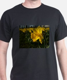 Easter Narcissus T-Shirt