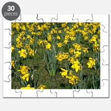 Easter Narcissus Puzzle