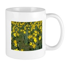 Easter Narcissus Mug
