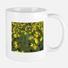 Easter Narcissus Mug