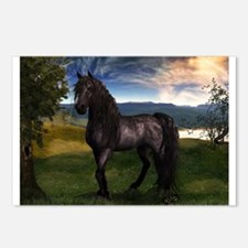 Freisian Horse Postcards (Package of 8)
