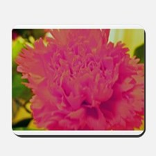 pink carnation flower. floral ohotography Mousepad