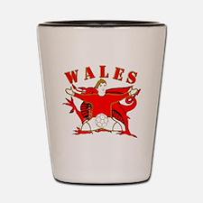 Wales football celebration Shot Glass