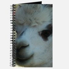 KSC OA Charmian face Alpaca Journal