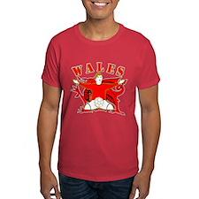 Wales football celebration T-Shirt