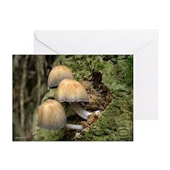 10 07 Calendar Greeting Card
