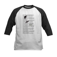 The Raven poem, Edgar Allan Poe poetry Tee