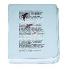 The Raven poem, Edgar Allan Poe poetry baby blanke