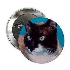 Snowshoe cat Button