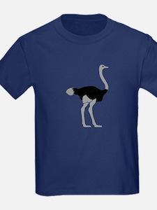 Ostrich T