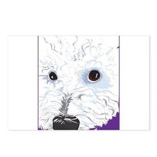 BichonFrise Postcards (Package of 8)