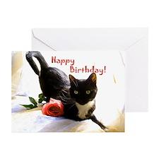 Happy Birthday Kitty Greeting Cards (Pk of 20)