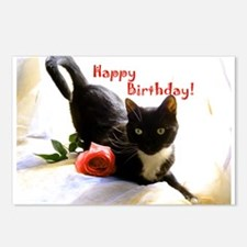 Happy Birthday Kitty Postcards (Package of 8)