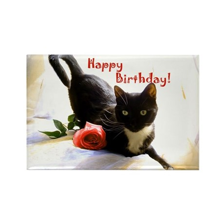 Happy Birthday Kitty Rectangle Magnet (10 pack)