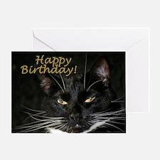 Stern Birthday Kitty Greeting Card