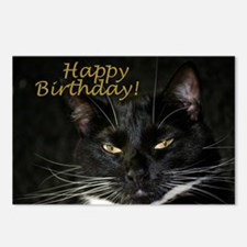 Stern Birthday Kitty Postcards (Package of 8)