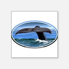 Whale Fluke / Tail car boat Seadoo Oval Sticker