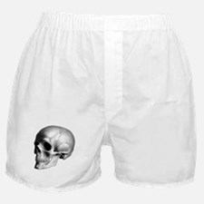 Skull Illustration Boxer Shorts
