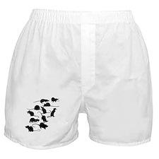 Lots Of Rats Boxer Shorts