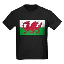 Wales Flag T