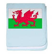 Wales Flag baby blanket