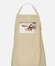 Red Fox in the Snow Apron