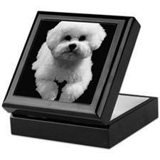 Beau in Black Keepsake Box