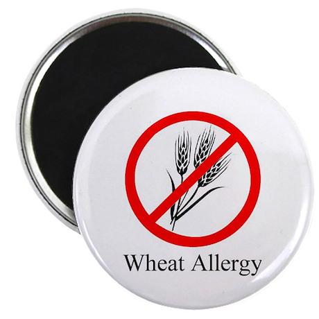 "Wheat Allergy 2.25"" Magnet (10 pack)"