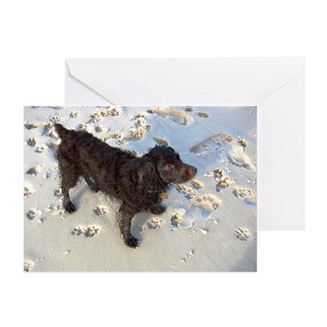 Scully with Pawprints Greeting Cards