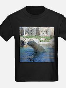 Polar bear in water T