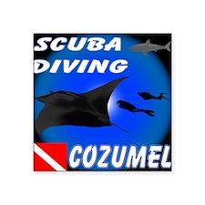 Scuba Diving Cozumel Rectangle Sticker