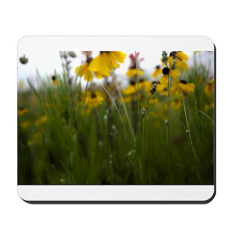 Flowers in Spring Mousepad