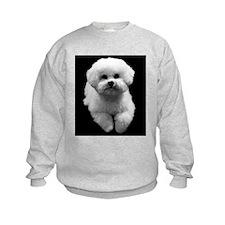 Beau the Beautiful Bichon Sweatshirt