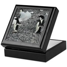 Three Adelies Keepsake Box