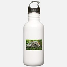 Sleeping Beauty/Bengal White Tiger Water Bottle